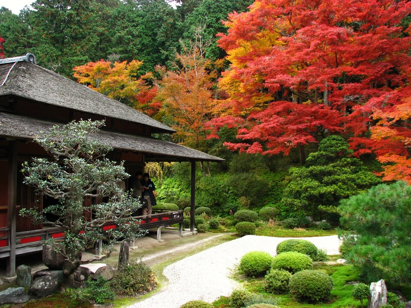 Jardins for Maison zen japonaise